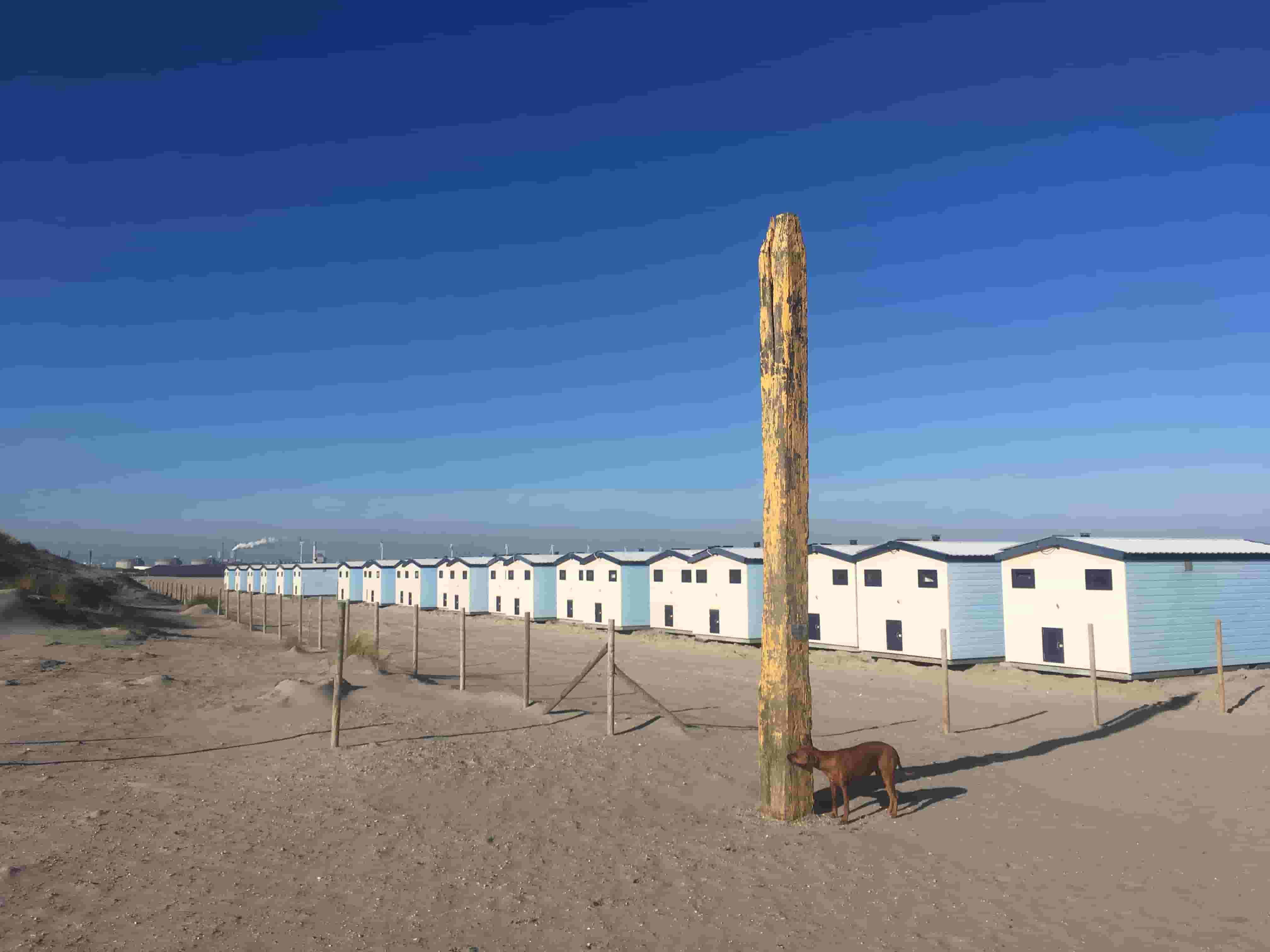strandhuisjes-hoek-van-holland