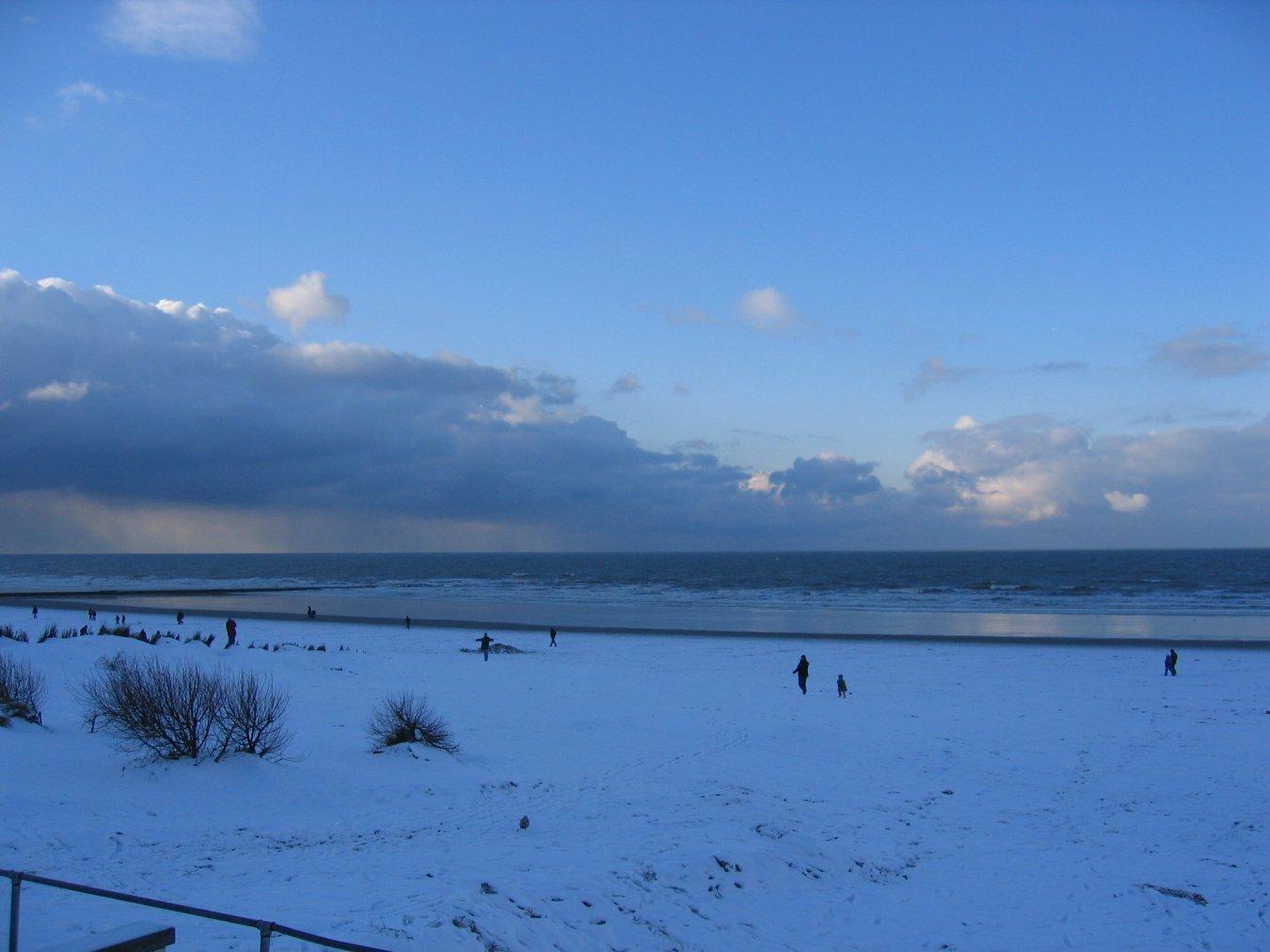 kerst strand, hoek van holland
